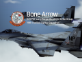 F-15C 111th Bone Arrow Squadron
