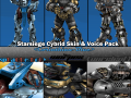 Cybrid Skin & Voice Pack