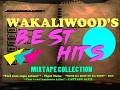 Wakaliwood's Best Hits - In game Music Add-on