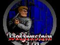Nixos Wolfenstein 3D mods
