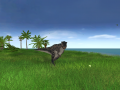 JWE Albertosaurus