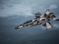 F/A-18F Super Hornet - Splinter Camouflage