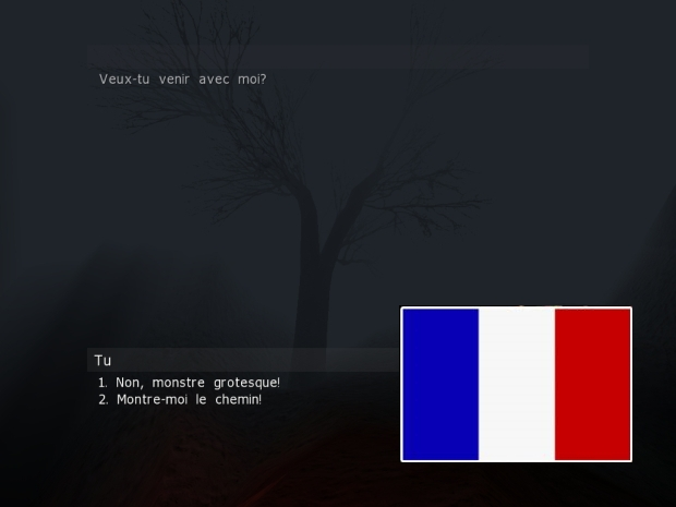 SturmMOD v1.1 Patch [FRENCH] (Deluxe / Small)