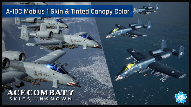A-10C Mobius 1 Skin and Color Tinted Canopy Pack