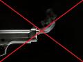 Disable gun's smoke for 1.1609