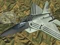 F-22A -Warwolf-