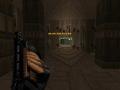 Slug shotgun for Bdv21