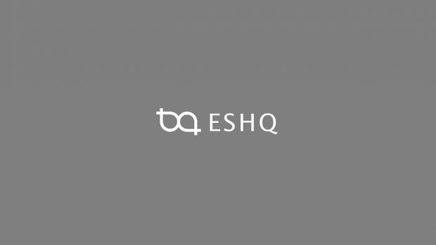 ESHQ update to v 10.3b