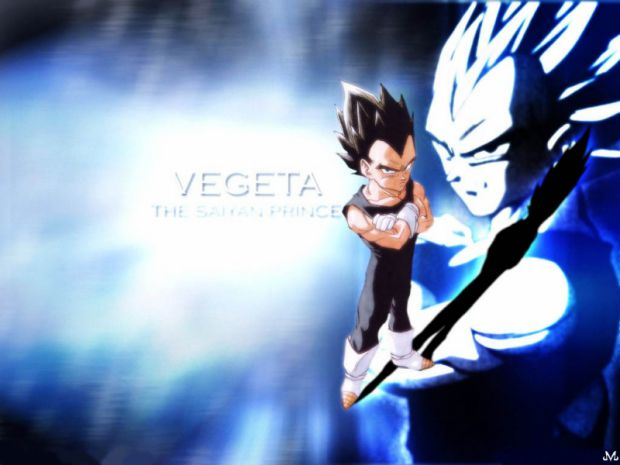 lame ass vegeta