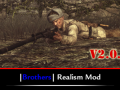 Brothers Realism Mod v2.0.9 (English) (Updated)