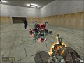 Half-Life 2 Crazy Ball Mod Beta V0.3
