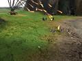 Artillery Addon