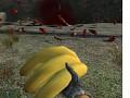Banana Bomb !!