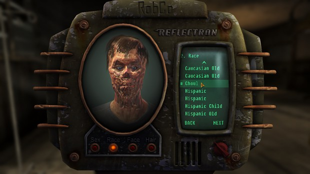 Fallout NV - More Character options