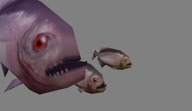 Piranhas