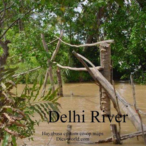 Delhi River