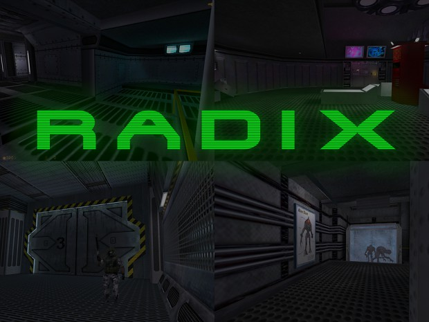 Radix - Steam Version