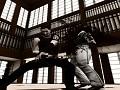 Kung Fu Evolution 3.0 Trailer.