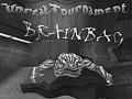 brainbag9