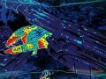 New predator thermal vision