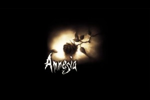 amnesia - custom stories installer