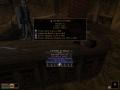 Diablo 2 Based Magic and Unique Weapond/Armor