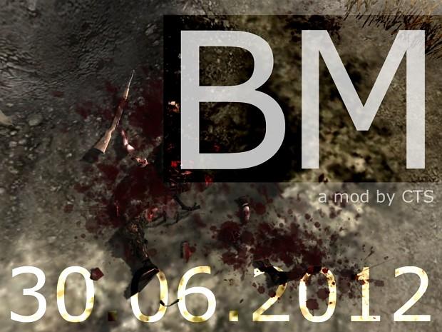 BM Mod 30.06.2012