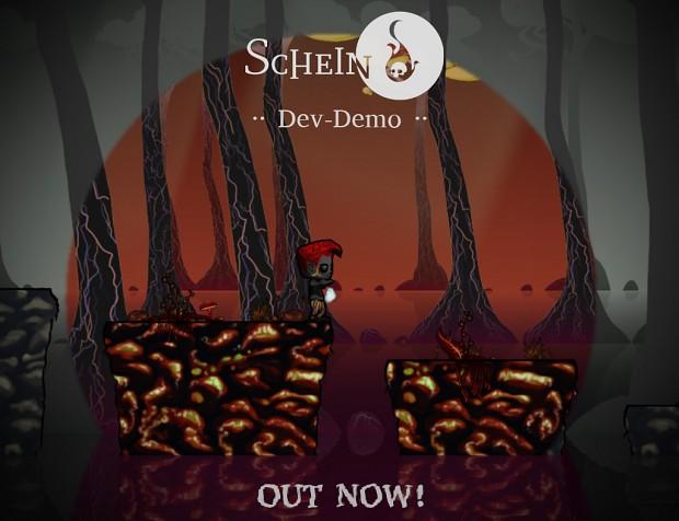 Schein Dev-Demo