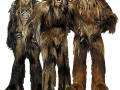 The Kashyyyk Mappack