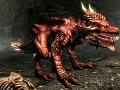 Fire Dragonn Companion