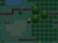 Pokeman Ruby Enhanced v1.5