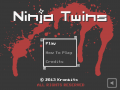 Ninja Twins for Windows