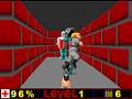 Wolfenstein Portable Beta