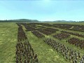 quick roman armies