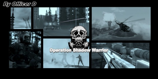 Arma 2 : Operation Shadow Warrior