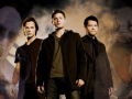 Amnesia: Team Free Will