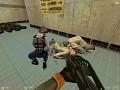Half-life: Survivors