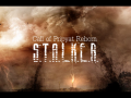 Call of Pripyat Reborn 1.14.3 (Full Installation)
