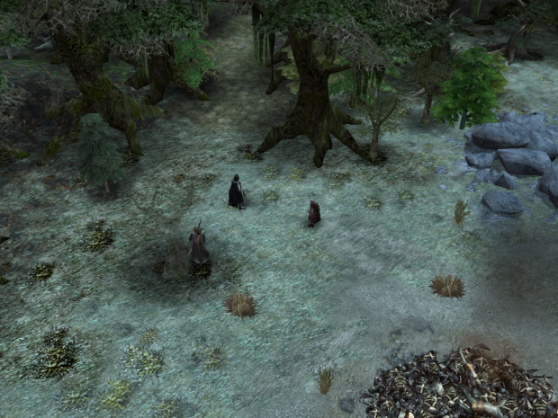 Fangorn Forest Again