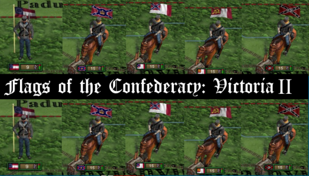 New Flags for the CSA v1.0
