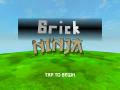 Brick Ninja | Windows Installer