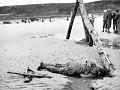 Normandy Campaign_03