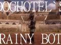 Doghotel's Brainy Bots 03-Jan-2015 (Alpha)