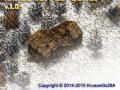 KKnD2 Terrain Editor v.1,04