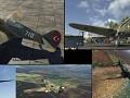 TAF P-40 Kittyhawk