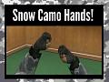Snow Hands