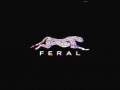 Updated Feral Ident