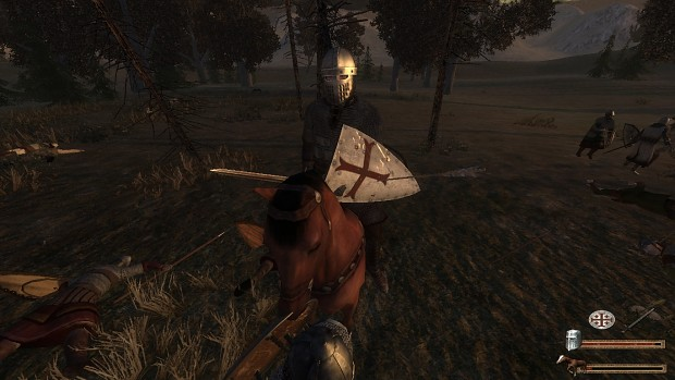 Realism ENB shaders for Ivanhoe mods