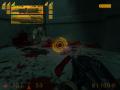 DiamonD's Half-Life Final