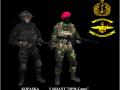 Indonesian NAVY(TNI-AL) elite force skin